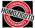 Homozigoto