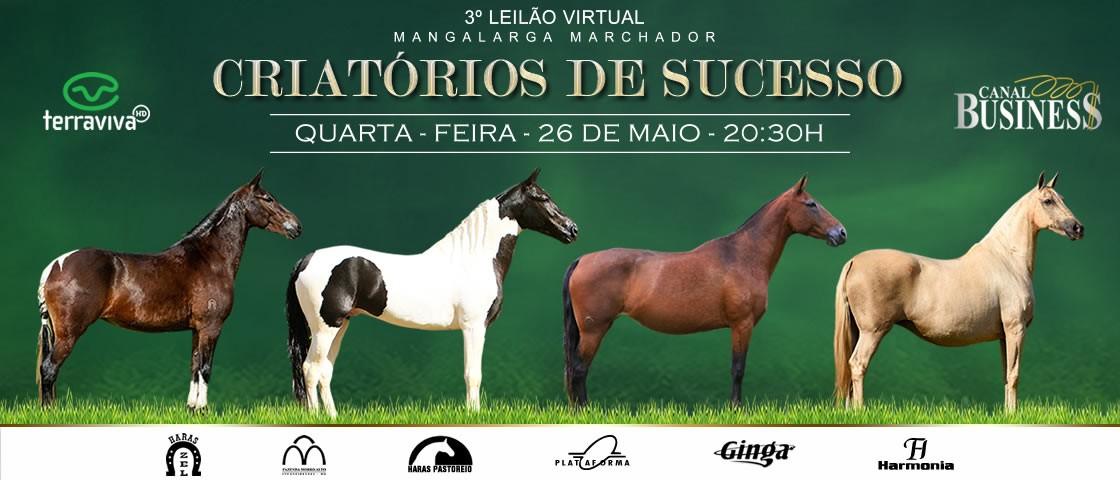 Slide SLIDE 3º LEILÃO VIRTUAL CRIATÓRIOS DE SUCESSO