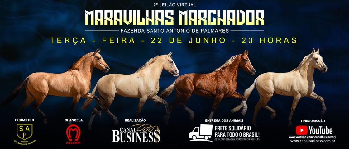 Slide SLIDE 2º LEILÃO VIRTUAL MARAVILHAS MARCHADOR