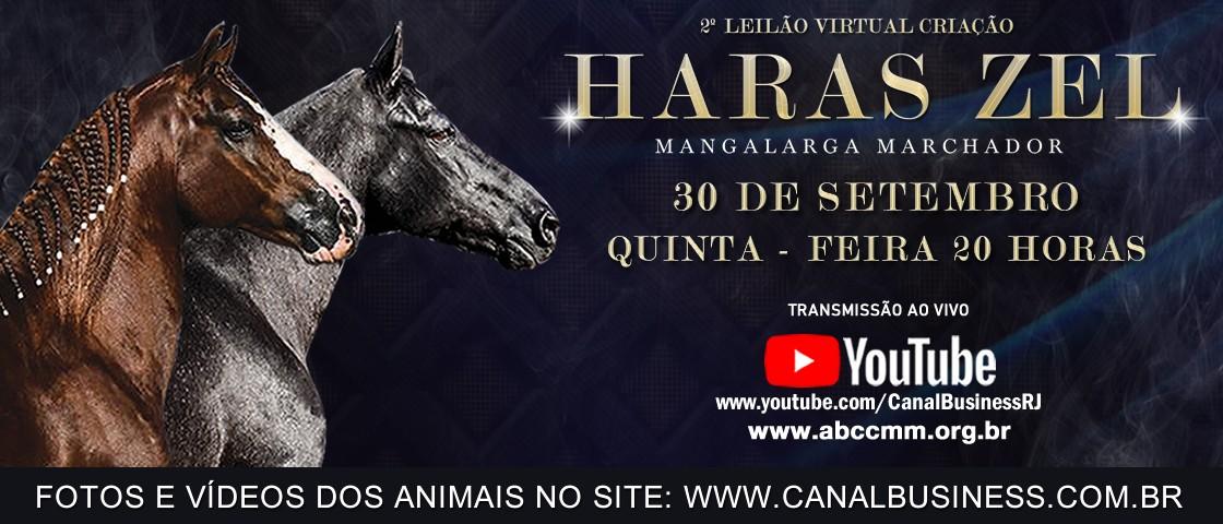 Slide SLIDE 2º LEILAO VIRTUAL CRIAÇÃO HARAS ZEL