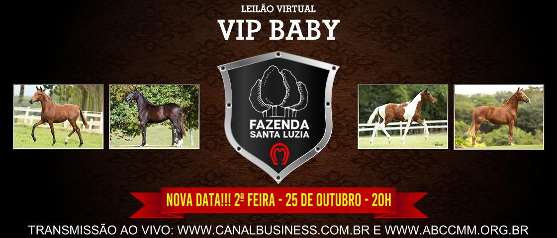 Slide SLIDE LEILAO VIRTUAL VIP BABY FAZENDA SANTA LUZIA